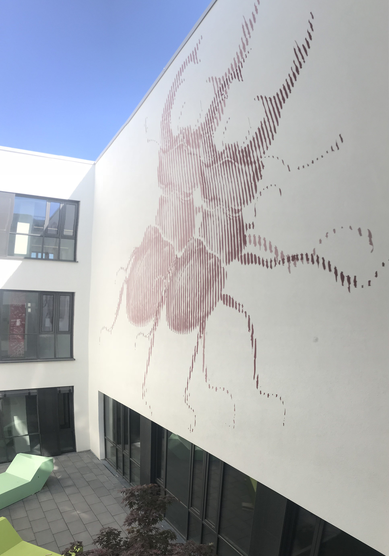 graffitiauftrag-graffiti-dadi-werkalbrecht-duerer-schule-weiterstadt-tiere