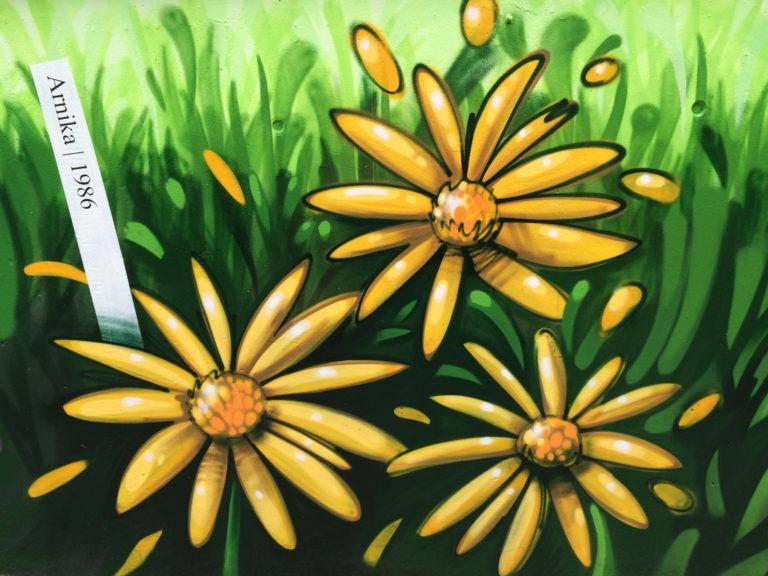 Graffitikuenstler, Graffitiauftrag, Artmos4, DeutscheBahn, Pflanzen, illustrativ