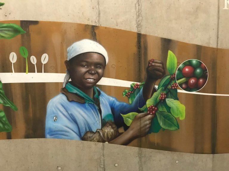 Graffitikuenstler, Graffitiauftrag, Artmos4, Aldi, Weltkarte, Pflanze, Mensch, Grafisch, Fotorealistisch