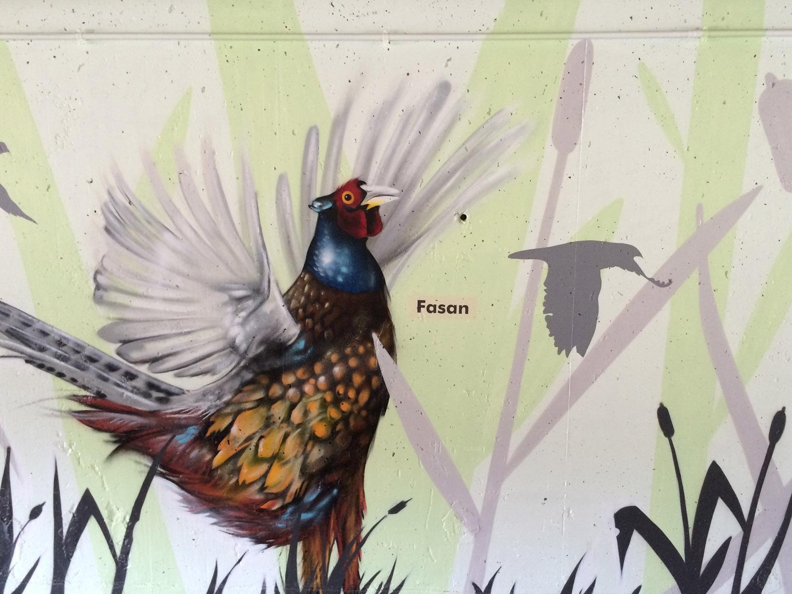 graffitikuenstler_graffitiauftrag_artmos4_gemeinde_moemlingen_tier_pflanzen_fotorealistisch_4